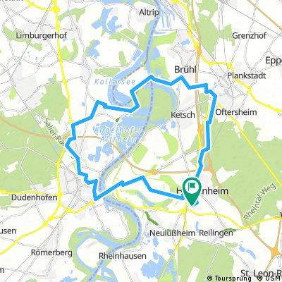 Speyer - Kollerinsel
