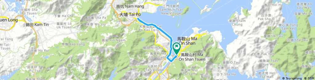 From Ma On Shan Kam Tai Court To Tai Po & Return