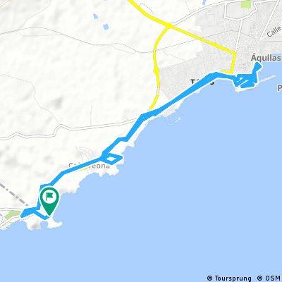 Playa Carolina-Playa Higuerica- Aguilas-Castillo de San Juan- und retour