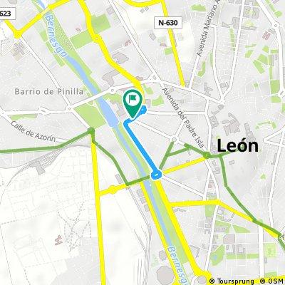 LXIII Carrera del Pavo de León