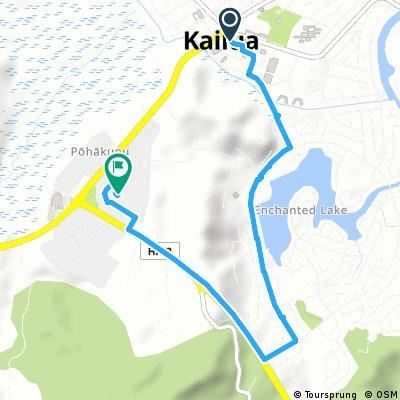 Brief ride through Kailua