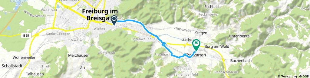 2017-06-16 5a. Freiburg - Bahnhof Himmelreich Kirchzarten