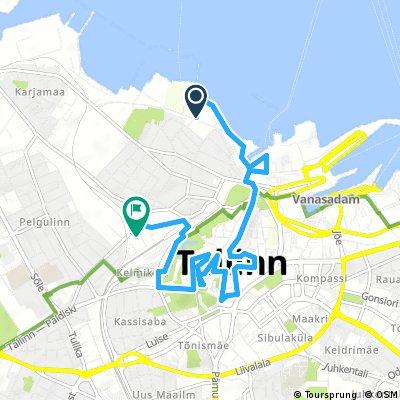 In giro per le strade di Tallinn