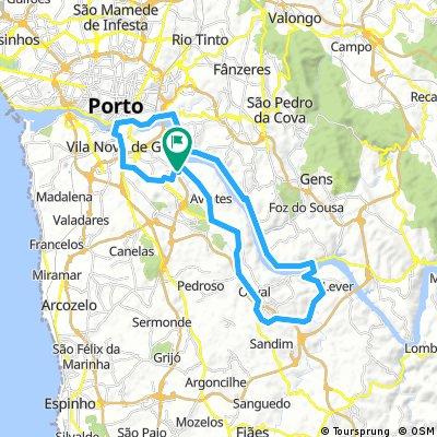 Oliveira Douro - Barragem (Crestuma-Lever) - Ponte D.Luiz - Avenida da Republica - N222 - Ollveira do Douro