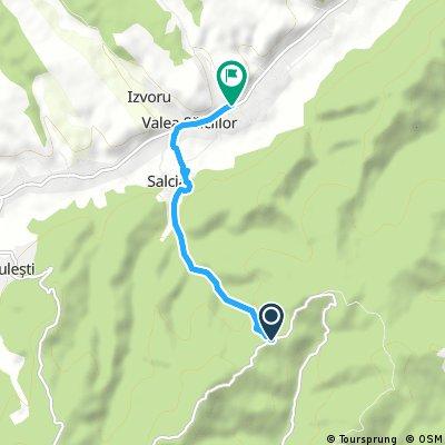 dealul istrita - salcia - valea salciilor