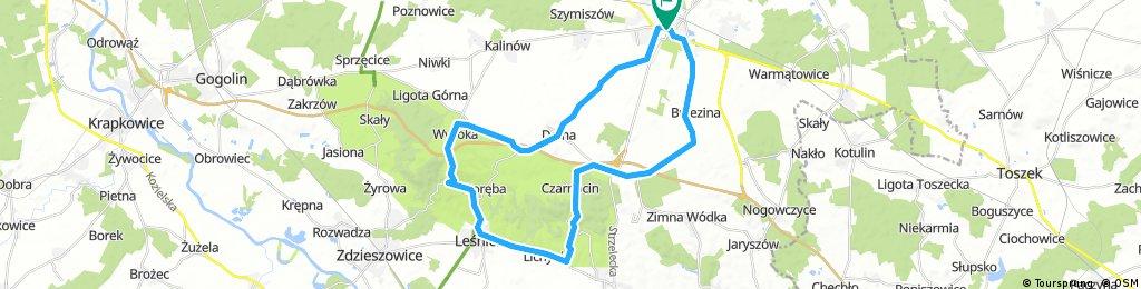 Strzelce Opolskie - Góra Św. Anny - Lichynia - Czarnocin - Olszowa - Strzelce Opolskie
