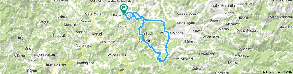 Turul Rosia Montana-Negrileasa-Rosia Montana