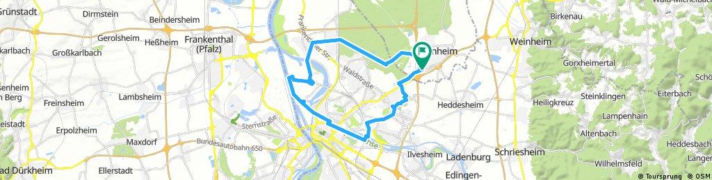 Tourenrad Viernheim-Neckar-Rhein-Karlstern