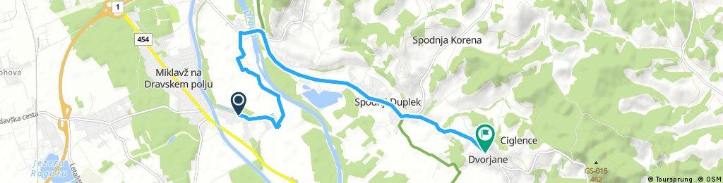 Miklavž na Dravskem polju - Dvorjane