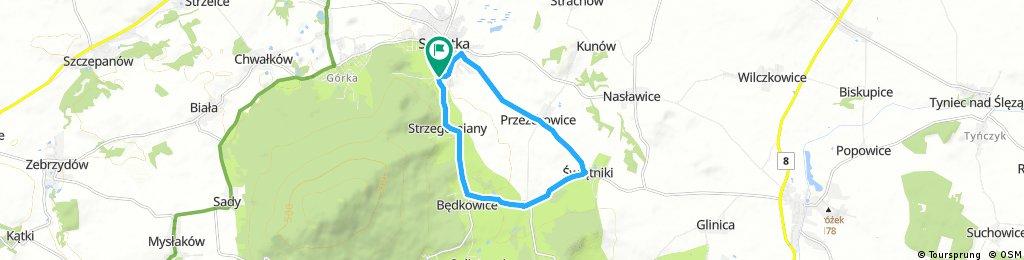 Runda Spadających Liści 11,50 km