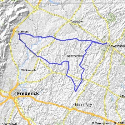 Woodsboro Black Ankle Loop