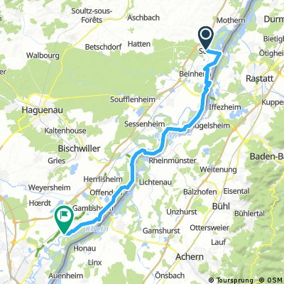 Seltz - LaWanzenau am Rhein entlang