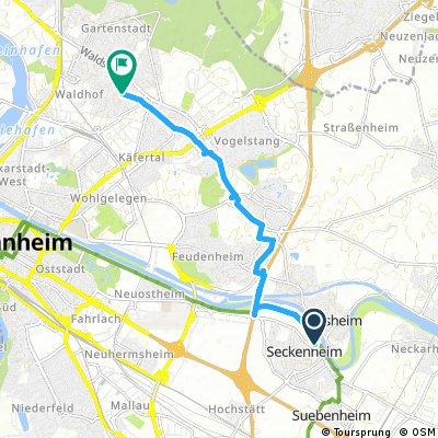 Ausfahrt durch Mannheim