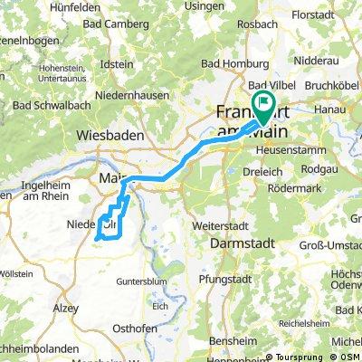 CTF Mainz
