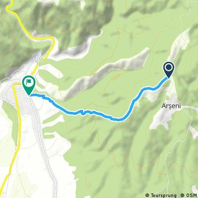 Downhill Arseni-Bumbesti-Jiu