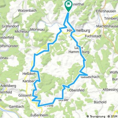 Untererthal-Ruine Homburg-Aschfeld-Untererthal