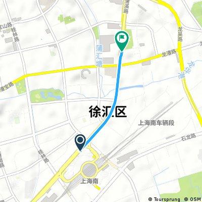 For Carina 龙漕路