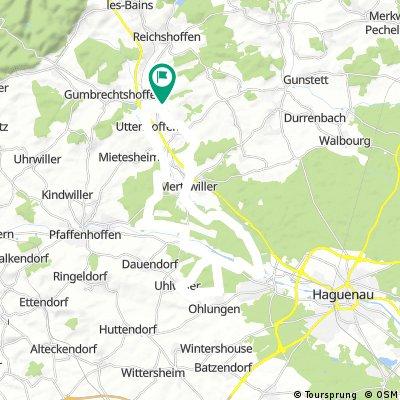 Gundershoffen 36km
