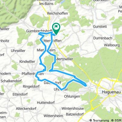 Gundershoffen 42km