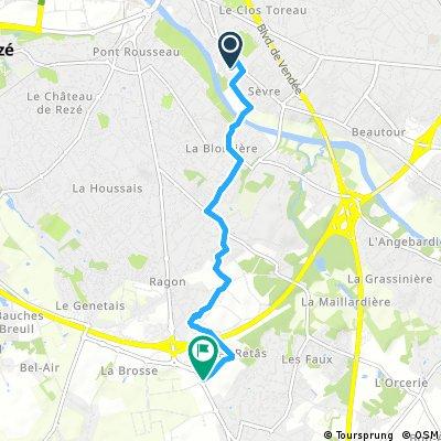 5.3 KM to chlorophyl shop