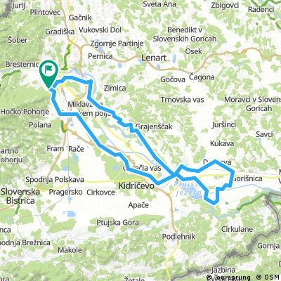 Maribor Ptuj in okolica krožna