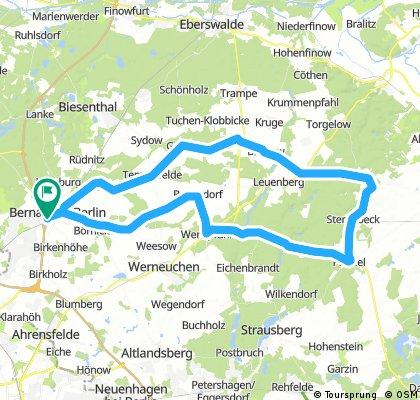 P4 - Zum langen Berg - ESV Lok Schöneweide Berlin
