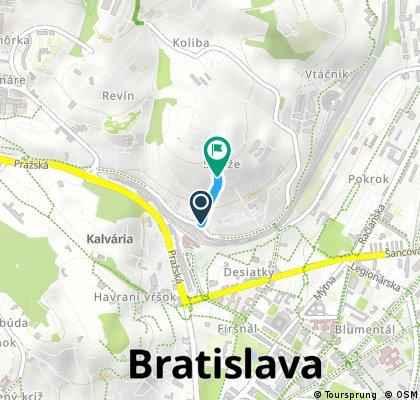 Bratislavsky Koppenberg