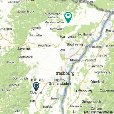 Obernei-Hagenau-Biblisheim (101km)