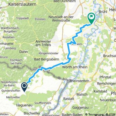 Biblisheim-Speyer (100km)