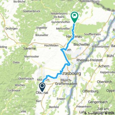 Obernei-Hagenau-Biblisheim (84km)