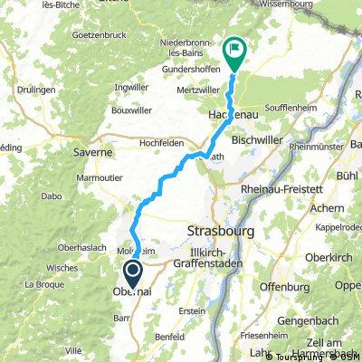 Obernei-Hagenau-Biblisheim (73km)