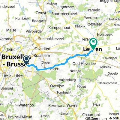 Brüssel-Löwen (r)