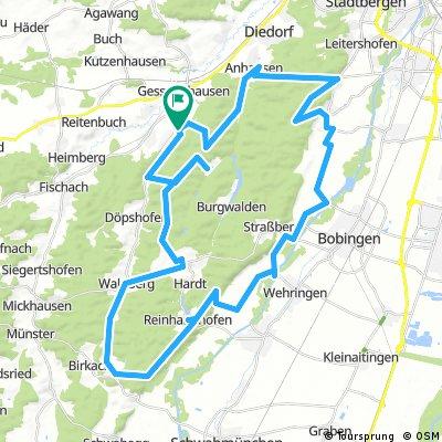 E-Bike Westliche Wälder ab Oberschönenfeld