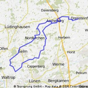 Teils RTF Do-Nord Drensteinfurt-Bork-Nordkirchen-Drensteinfurt