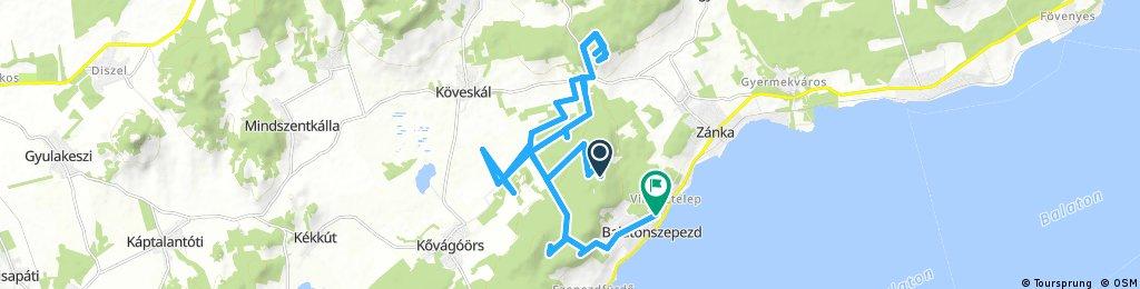 ride through Balatonszepezd