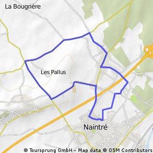 Naintré
