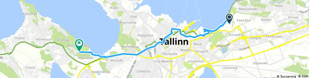 TALLINN MIDSOMMAR