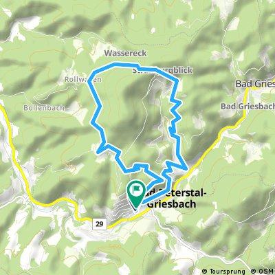 Premiumwandern in Bad Peterstal-Griesbach:  Der  Schwarzwaldsteig - eine Tour für &quot