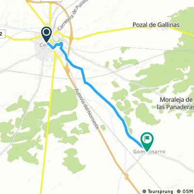 Marcha de la Movilidad - Gomeznarro