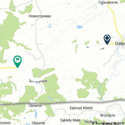 ride from Жигулево to Kaliningrad