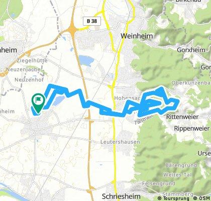 Radrunde durch Heddesheim