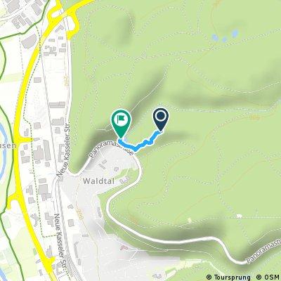 Downhillstrecke Waldtal