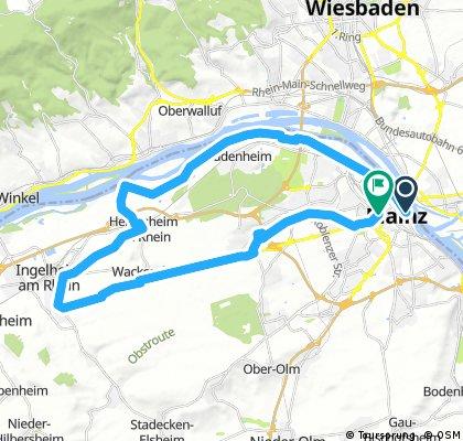 31_Mainz – Heidesheim – Ingelheim – Gonsenheim – Mainz
