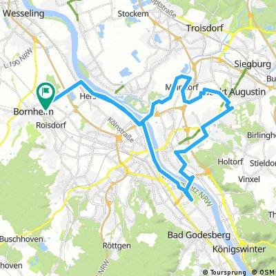 Von Bornheim in die Siegauen und die Rheinauen