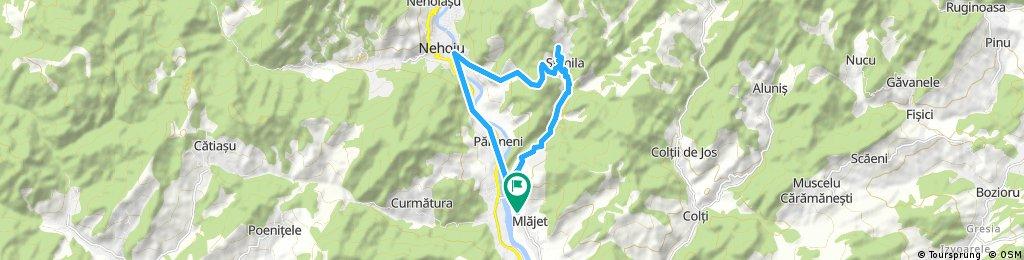 Quick bike tour Nehoiu