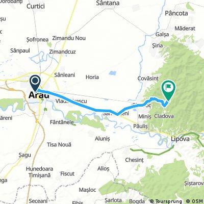 Arad- Cladova