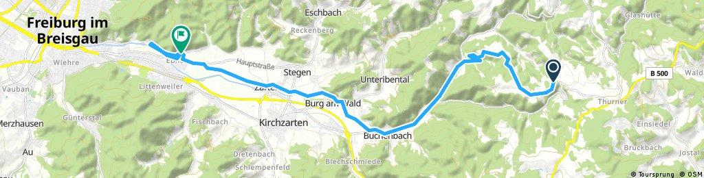 bike tour through Freiburg im Breisgau