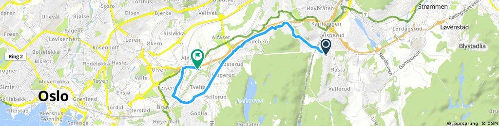ride through Oslo