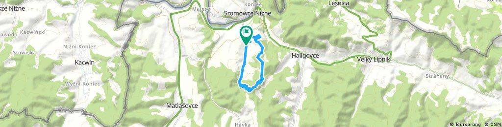 Lechnica Single Trail GRIFTOF