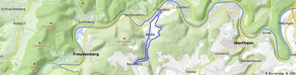 DownHill/Schenkenwald/Grillplatz Mo.-Runde